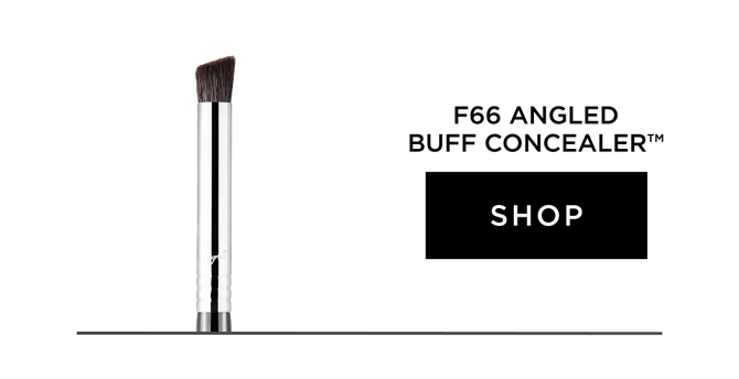 Shop F66 - Angled Buff Concealer