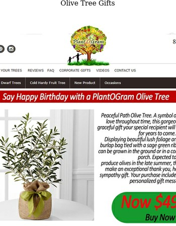 Say Happy Birthday with a PlantOGram Olive Tree