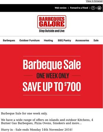 Hurry Last Days! Sale Ends Monday!