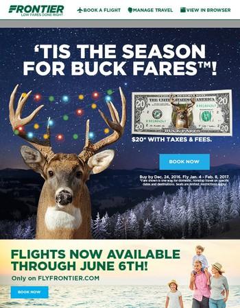 Visit someone deer!