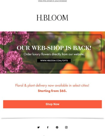 Our Web-shop is Open for Business!