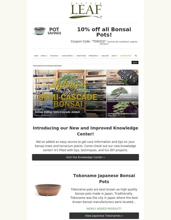 Mame and Tokoname Pots. What's the difference? + 10% off all Bonsai Pots.