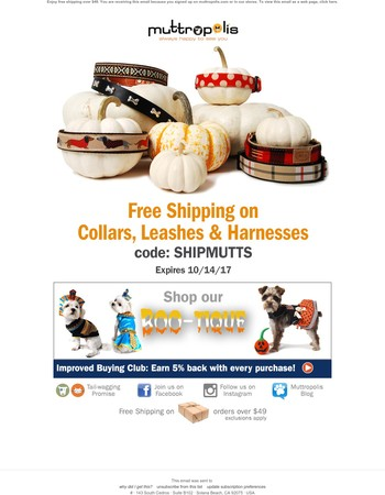 This Week Only! Free Shipping on Collars, Leashes & Harnesses