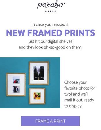 Framed Prints + DIY Photo Murals