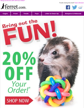 We Have Fun On Sale! Take 20% Off Your Order