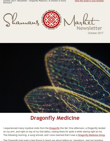 October 2017 Newsletter -Dragonfly Medicine & Connection to Food