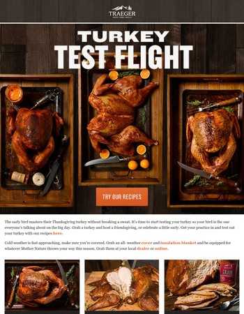 Test Your Wood-Fired Turkey