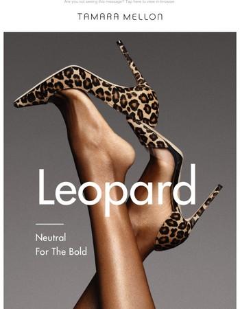 Leopard Is My Favorite Color