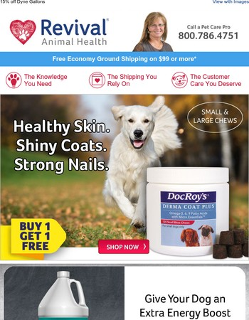 Buy 1 Get 1 – Derma Coat Plus