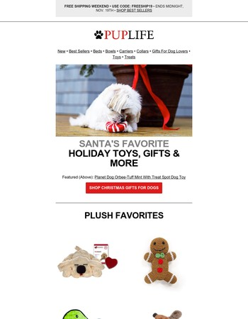 Pup Life Newsletter