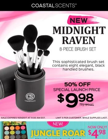 New Product ALERT! Midnight Raven Brush Set