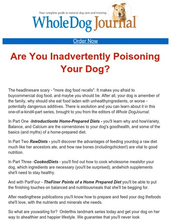 Are You Poisoning Your Dog - Without Even Knowing It?