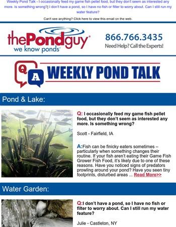 Weekly Pond Talk - Gamefish not Eating | Running Waterfalls in Winter