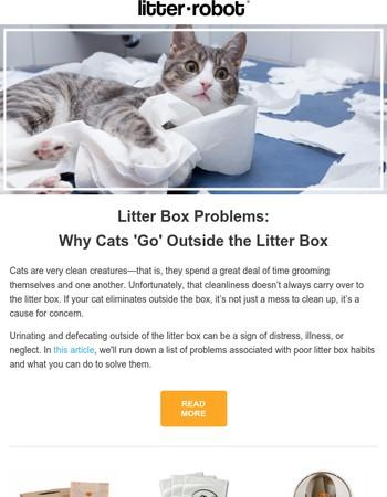 Litter Box Problems?
