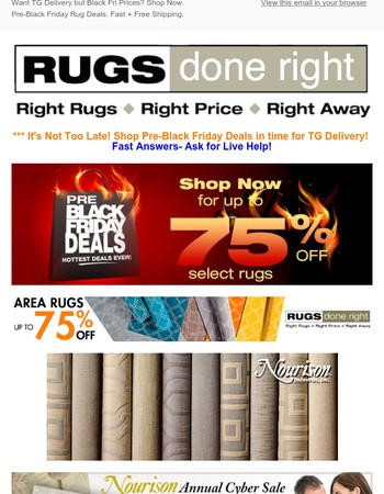 It's On! Black Friday Discounts up to 75% off Rugs + Free S&H