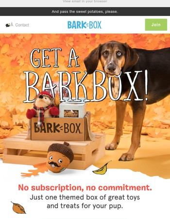 Get a taste of BarkBox!