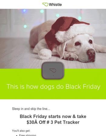 Don't wait 'til Friday! Take $30 Off Whistle 3 Pet Tracker