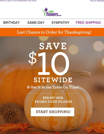 Last Chance! $10 Off + Guaranteed Delivery by Thanksgiving!