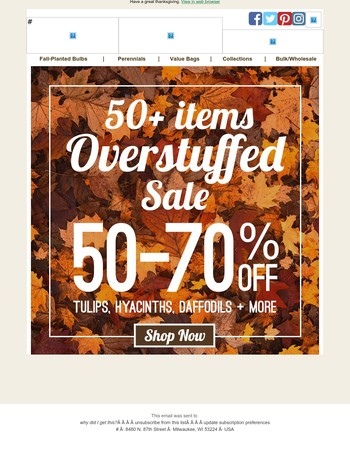 We're OVERSTUFFED! Save up to 70% this thanksgiving