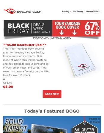 Thanksgiving Doorbuster Deal - 67% Off