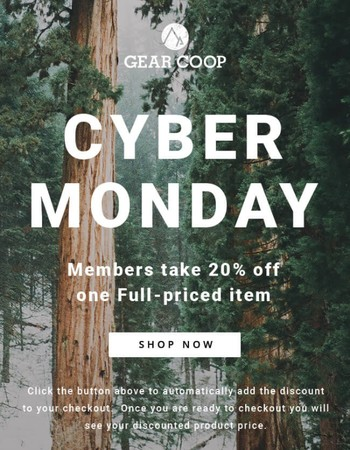 Cyber Monday is Our Final Call for Sales