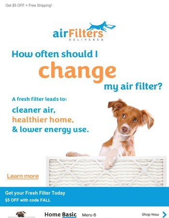 A Fresh Filter leads to a Healthier Home