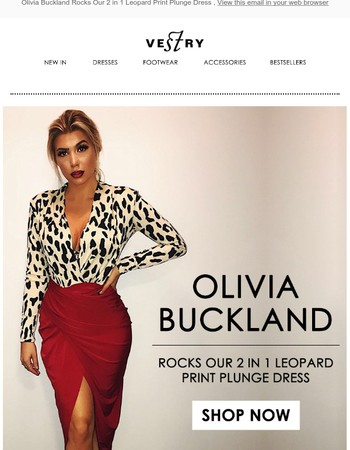 Olivia Buckland RocksOur 2 in 1 LeopardPrint Plunge Dress