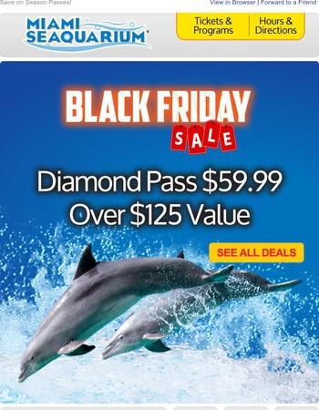 Black Friday Deals Start NOW!