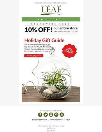 LAST DAY! 10% Storewide Sale! + Holiday Tree Gift Guide