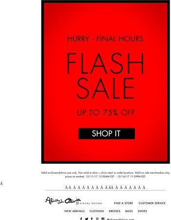 Hurry! Final Hours of Flash Sale