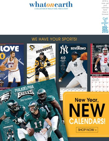 Celebrate the New Year with your Favorite Sports Team