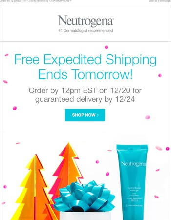 Last Chance to Receive FREE Expedited Shipping + a FREE Gift!