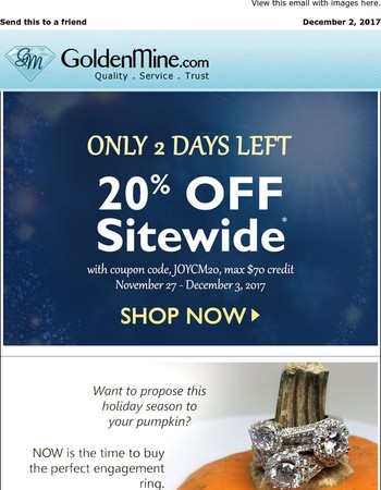 LAST CHANCE to Save 20% + Gift Ideas That Sparkle