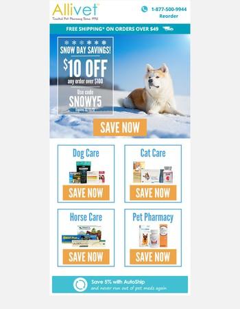 Snow Day Savings