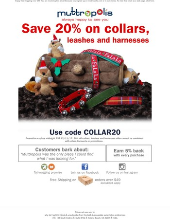 Save 20% on Collars, Leashes & Harnesses! 3 Days Left