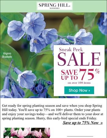 Save on 100+ plants