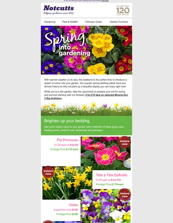 Spring into the garden this weekend