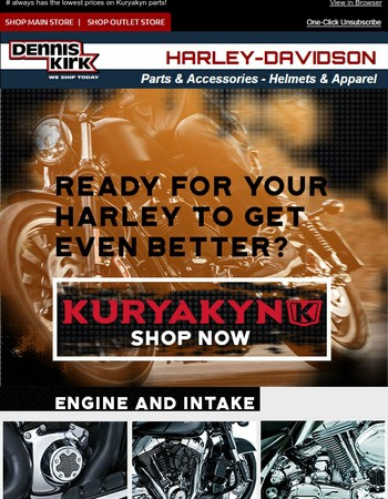 ( Kuryakyn + Dennis Kirk ) = Outstanding Selection Shipped Fast!