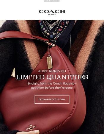Limited Quantities: Edie Shoulder Bag & More!