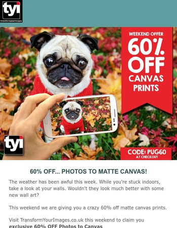 Massive Photo to Canvas Sale