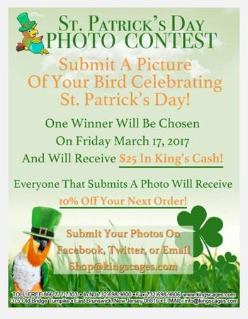 St. Patrick's Day Photo Contest!!