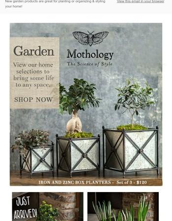 Get your Spring On   New Garden Arrivals