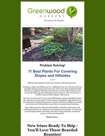 11 Best Plants for Slopes and Hillsides