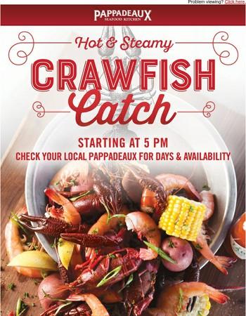 It's a crawfish-lovin' good time!