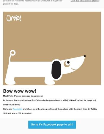 Meet Omlet's Adorable New Pet