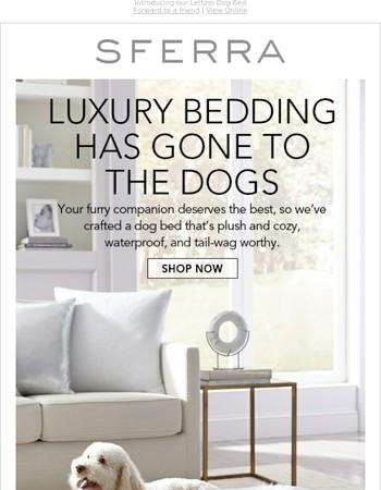 Love me, love my dog bed
