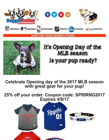Baseball Season has Begun - Get 25% off!