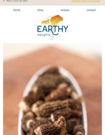 Earthy Delights Newsletter