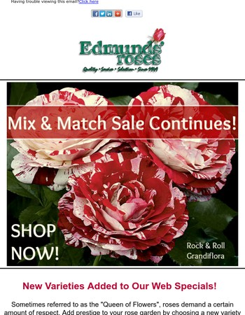 Our Mix & Match Sale Continues!
