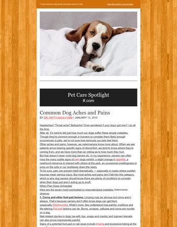 Offical Dog House Newsletter